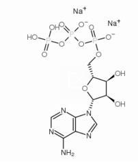 腺苷-5′-三磷酸二钠盐